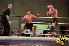 Fightnight-Web-Kampf-15